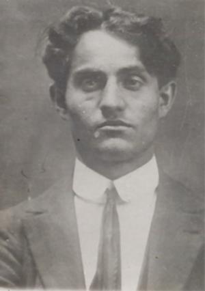 Enrico Arrigoni - Anarcopedia